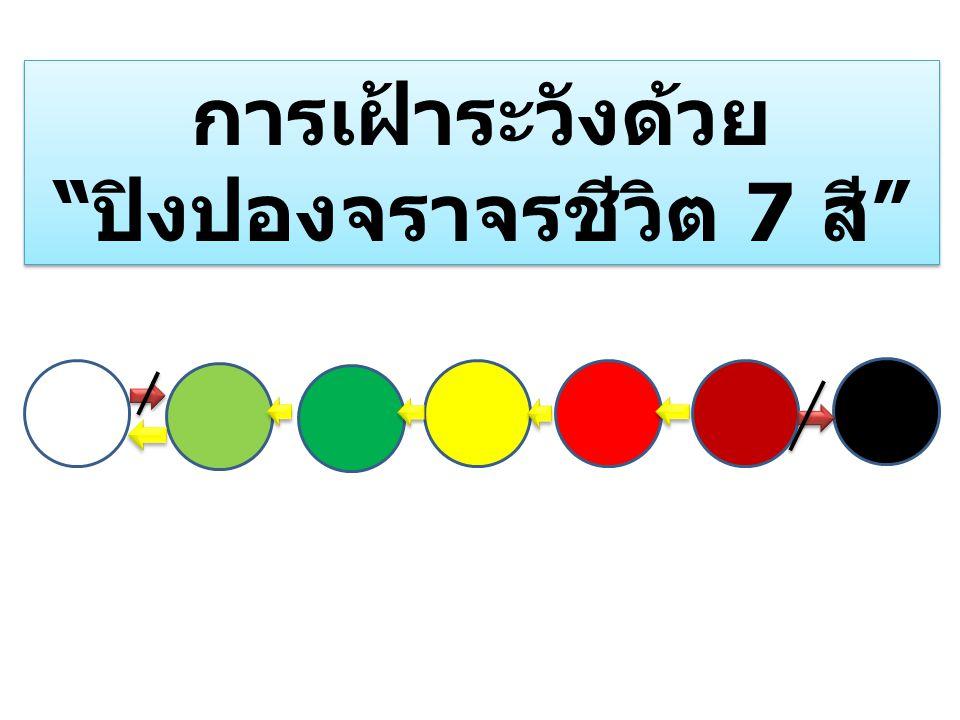 """การเฝ้าระวังด้วย """" ปิงปองจราจรชีวิต 7 สี """" การเฝ้าระวังด้วย """" ปิงปองจราจรชีวิต 7 สี """""""