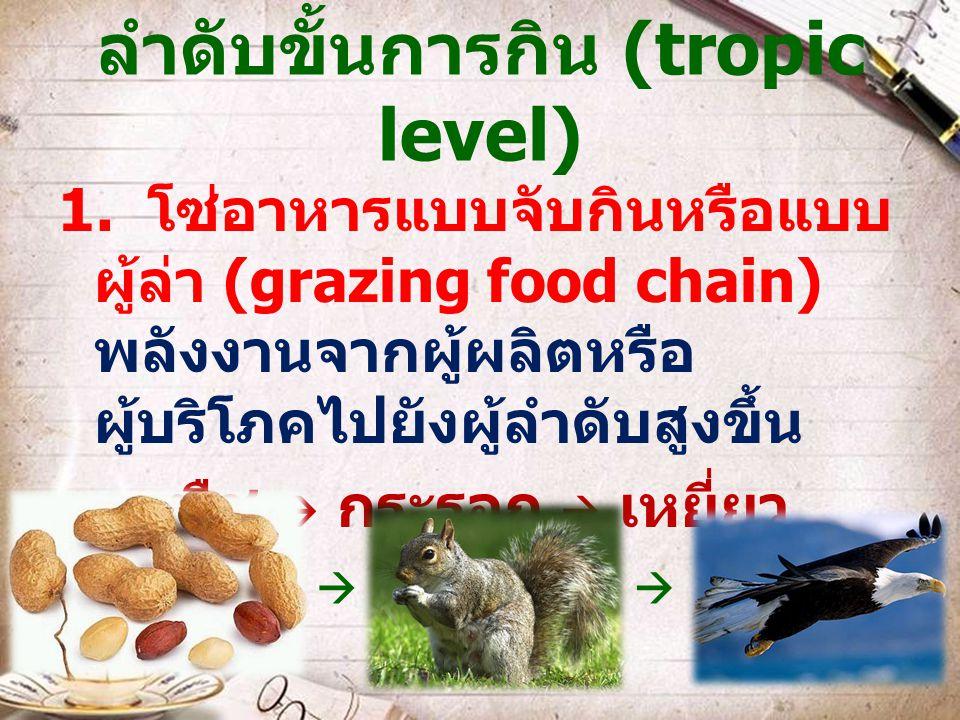 ลำดับขั้นการกิน (tropic level) 1. โซ่อาหารแบบจับกินหรือแบบ ผู้ล่า (grazing food chain) พลังงานจากผู้ผลิตหรือ ผู้บริโภคไปยังผู้ลำดับสูงขึ้น พืช  กระรอ
