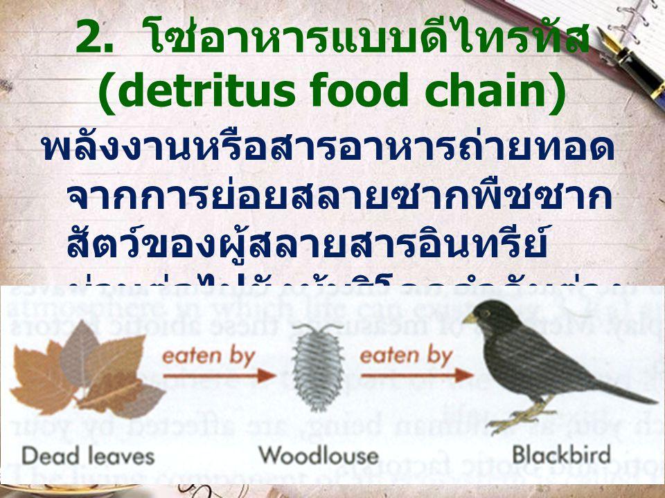 2. โซ่อาหารแบบดีไทรทัส (detritus food chain) พลังงานหรือสารอาหารถ่ายทอด จากการย่อยสลายซากพืชซาก สัตว์ของผู้สลายสารอินทรีย์ ผ่านต่อไปยังผู้บริโภคลำดับต