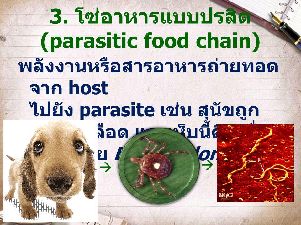 3. โซ่อาหารแบบปรสิต (parasitic food chain) พลังงานหรือสารอาหารถ่ายทอด จาก host ไปยัง parasite เช่น สุนัขถูก เห็บดูดเลือด และเห็บนี้ติดเชื่อ แบคทีเรีย