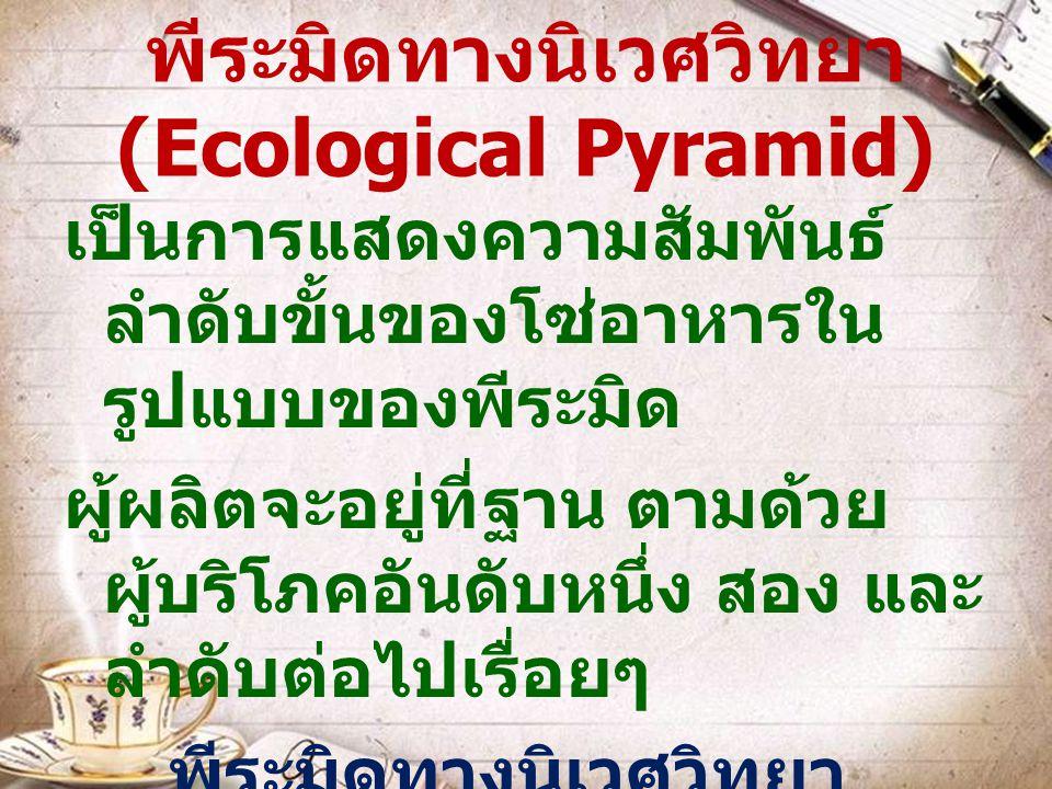 พีระมิดทางนิเวศวิทยา (Ecological Pyramid) เป็นการแสดงความสัมพันธ์ ลำดับขั้นของโซ่อาหารใน รูปแบบของพีระมิด ผู้ผลิตจะอยู่ที่ฐาน ตามด้วย ผู้บริโภคอันดับห