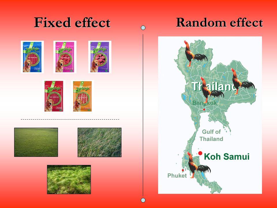 Fixed effect Random effect