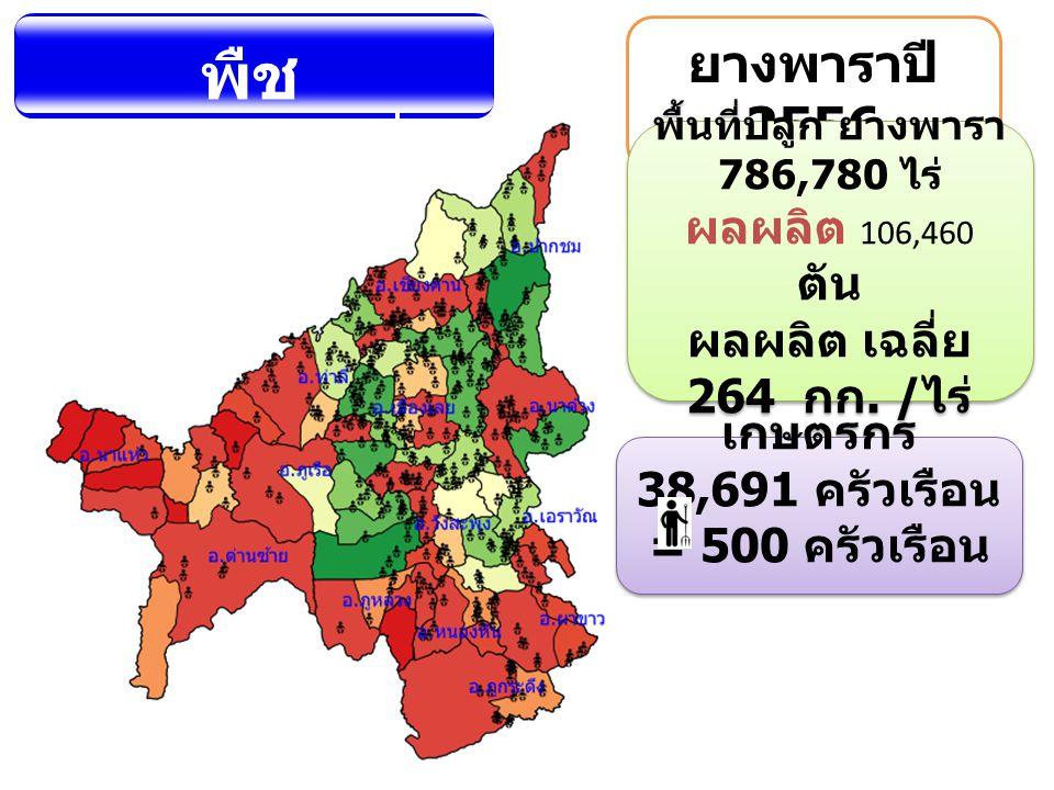 พืช เศรษฐกิจที่ สำคัญ ยางพาราปี 2556 พื้นที่ปลูก ยางพารา 786,780 ไร่ ผลผลิต 106,460 ตัน ผลผลิต เฉลี่ย 264 กก. / ไร่ พื้นที่ปลูก ยางพารา 786,780 ไร่ ผล