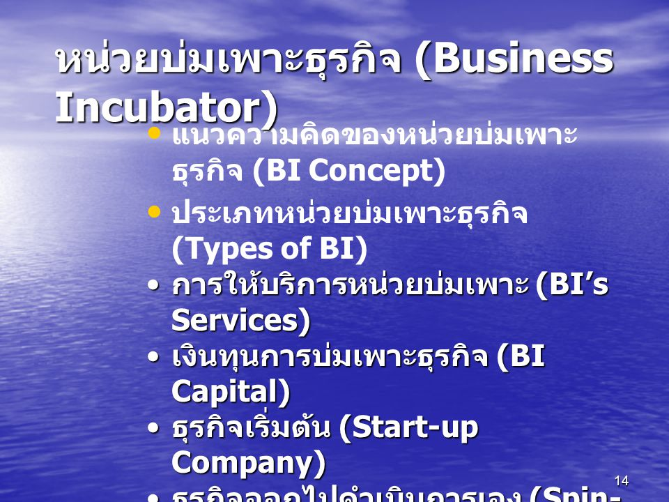 14 แนวความคิดของหน่วยบ่มเพาะ ธุรกิจ (BI Concept) ประเภทหน่วยบ่มเพาะธุรกิจ (Types of BI) การให้บริการหน่วยบ่มเพาะ (BI's Services) การให้บริการหน่วยบ่มเพาะ (BI's Services) เงินทุนการบ่มเพาะธุรกิจ (BI Capital) เงินทุนการบ่มเพาะธุรกิจ (BI Capital) ธุรกิจเริ่มต้น (Start-up Company) ธุรกิจเริ่มต้น (Start-up Company) ธุรกิจออกไปดำเนินการเอง (Spin- off Company) ธุรกิจออกไปดำเนินการเอง (Spin- off Company) อื่นๆ ที่เกี่ยวข้องกับการบ่มเพาะ ธุรกิจ (Others) อื่นๆ ที่เกี่ยวข้องกับการบ่มเพาะ ธุรกิจ (Others) หน่วยบ่มเพาะธุรกิจ (Business Incubator)