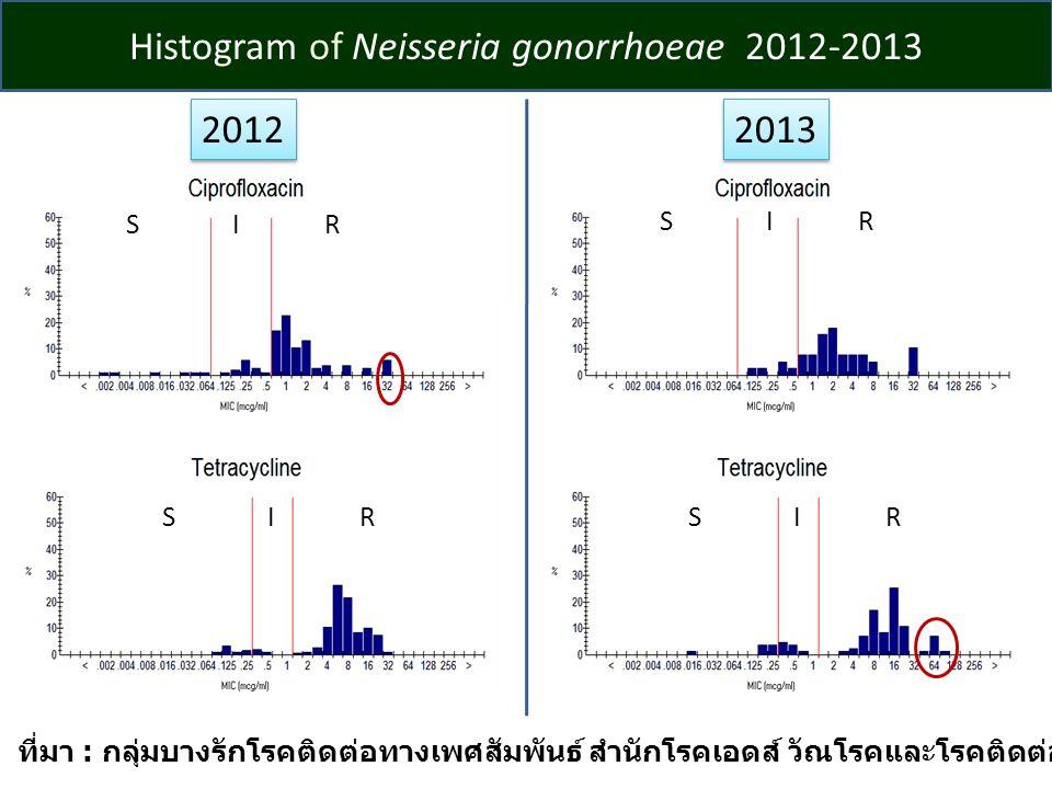 Histogram of Neisseria gonorrhoeae 2012-2013 2012 2013 ที่มา : กลุ่มบางรักโรคติดต่อทางเพศสัมพันธ์ สำนักโรคเอดส์ วัณโรคและโรคติดต่อทางเพศสัมพันธ์ SIRSIR