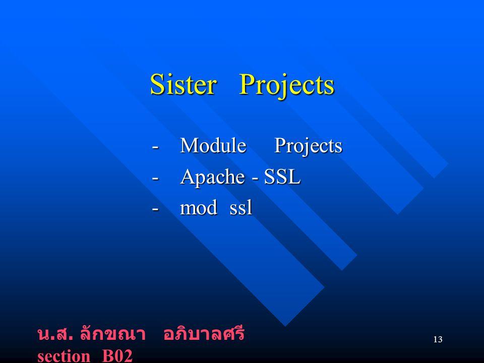 13 Sister Projects - Module Projects - Module Projects - Apache - SSL - Apache - SSL - mod ssl - mod ssl น.