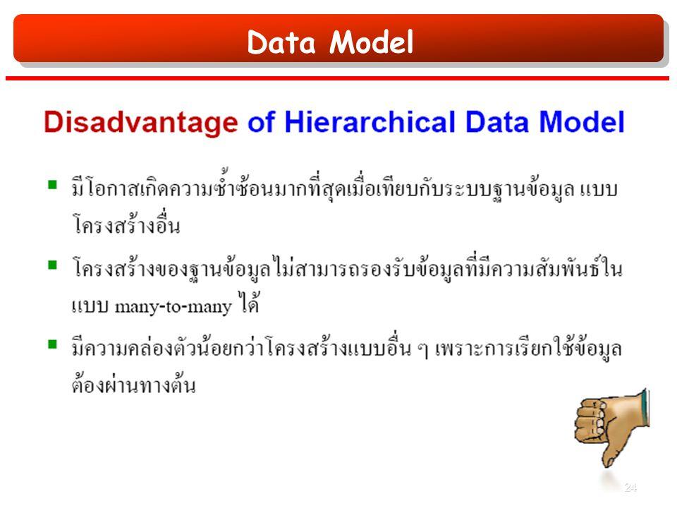 Data Model 24