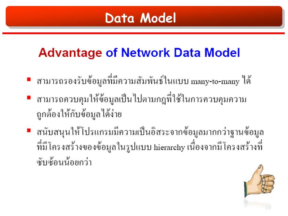 Data Model 29