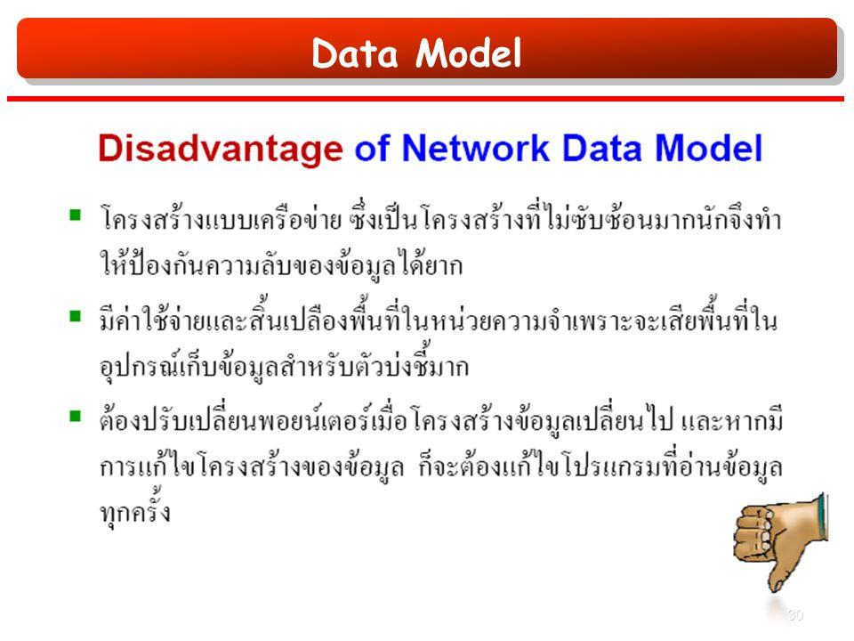 Data Model 30