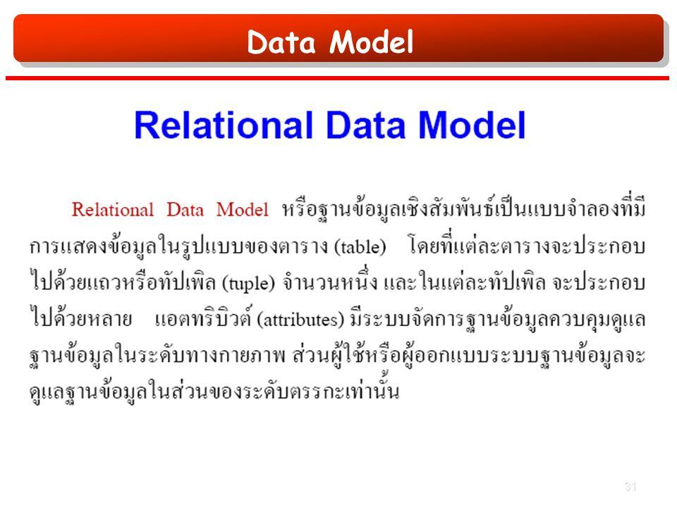 Data Model 31