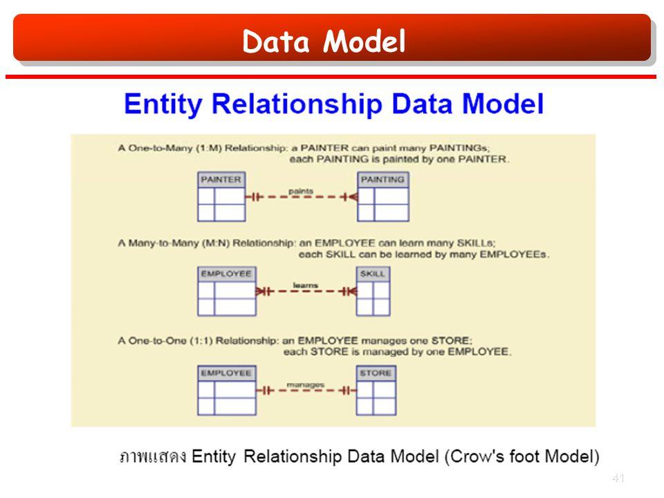 Data Model 41
