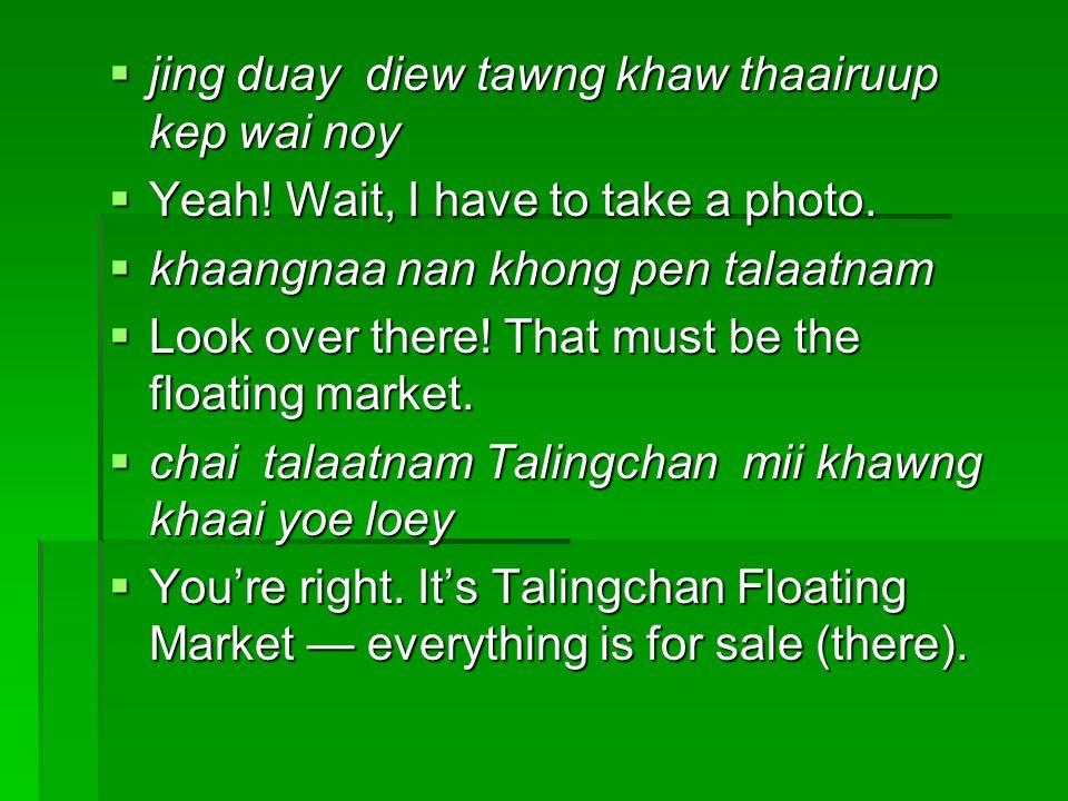  jing duay diew tawng khaw thaairuup kep wai noy  Yeah! Wait, I have to take a photo.  khaangnaa nan khong pen talaatnam  Look over there! That mu