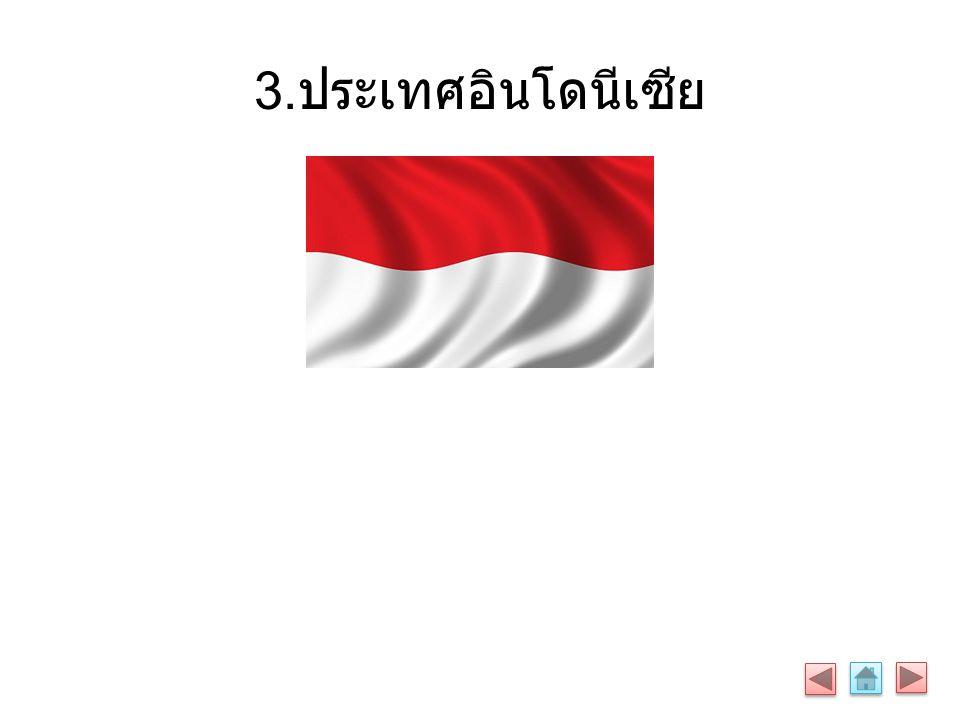 3. ประเทศอินโดนีเซีย