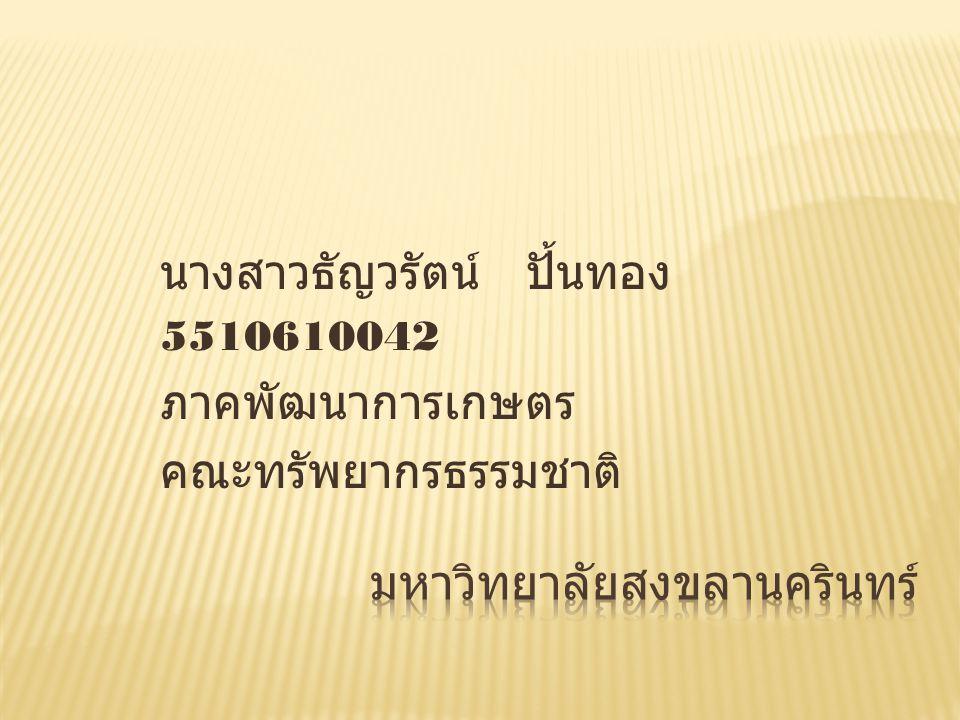 นางสาวธัญวรัตน์ ปั้นทอง 5510610042 ภาคพัฒนาการเกษตร คณะทรัพยากรธรรมชาติ