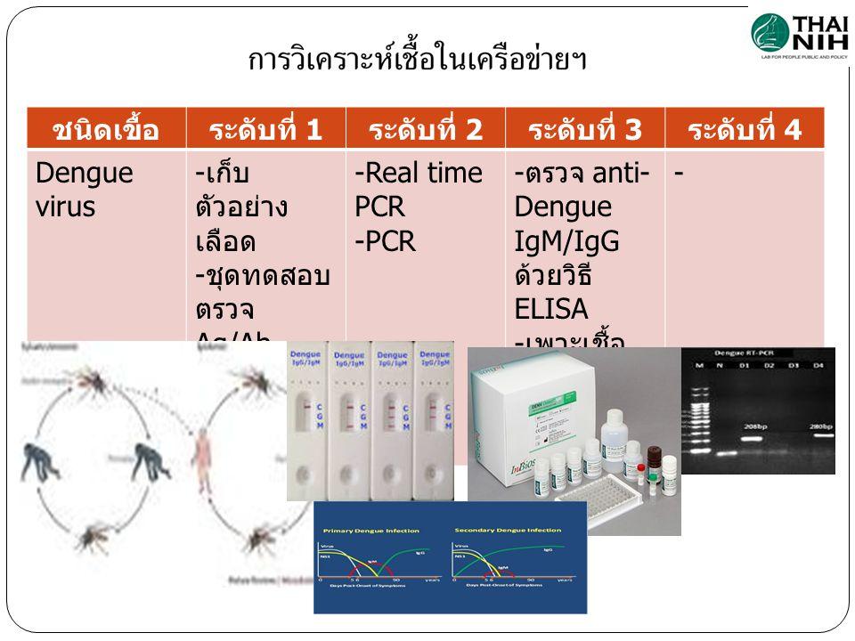ชนิดเขื้อระดับที่ 1 ระดับที่ 2 ระดับที่ 3 ระดับที่ 4 Dengue virus - เก็บ ตัวอย่าง เลือด - ชุดทดสอบ ตรวจ Ag/Ab - ส่งต่อ -Real time PCR -PCR - ตรวจ anti- Dengue IgM/IgG ด้วยวิธี ELISA - เพาะเชื้อ ไวรัส - ตรวจลำดับ เบส -