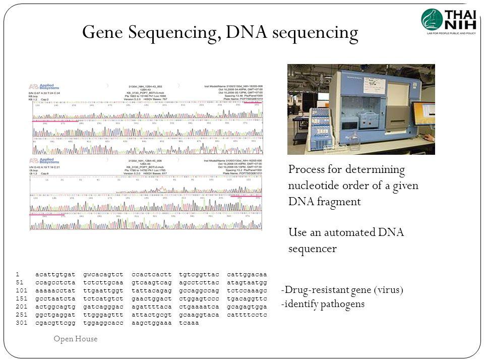 Gene Sequencing, DNA sequencing 1acattgtgatgwcacagtctccactcactttgtcggttaccattggacaa 51ccagcctctatctcttgcaagtcaagtcagagcctcttacatagtaatgg 101aaaaacctat