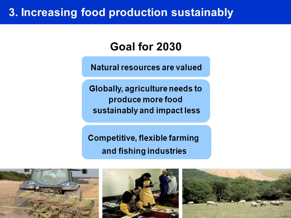 3. Increasing food production sustainably Goal for 2030 Natural resources are valued Globally, agriculture needs to produce more food sustainably and