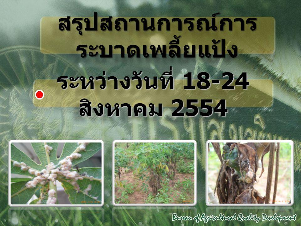 สรุปสถานการณ์การ ระบาดเพลี้ยแป้ง ระหว่างวันที่ 18-24 สิงหาคม 2554