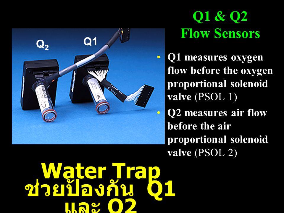 Q1 measures oxygen flow before the oxygen proportional solenoid valve (PSOL 1) Q2 measures air flow before the air proportional solenoid valve (PSOL 2