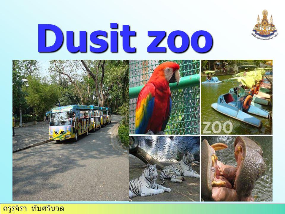 ครูรุจิรา ทับศรีนวล Dusit zoo