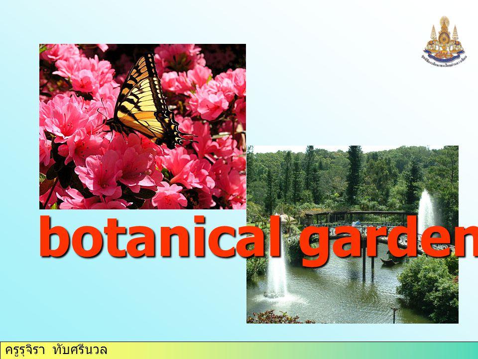 ครูรุจิรา ทับศรีนวล botanical garden