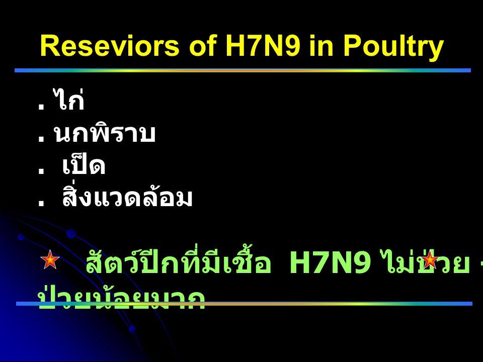 Reseviors of H7N9 in Poultry. ไก่. นกพิราบ. เป็ด. สิ่งแวดล้อม สัตว์ปีกที่มีเชื้อ H7N9 ไม่ป่วย - ป่วยน้อยมาก