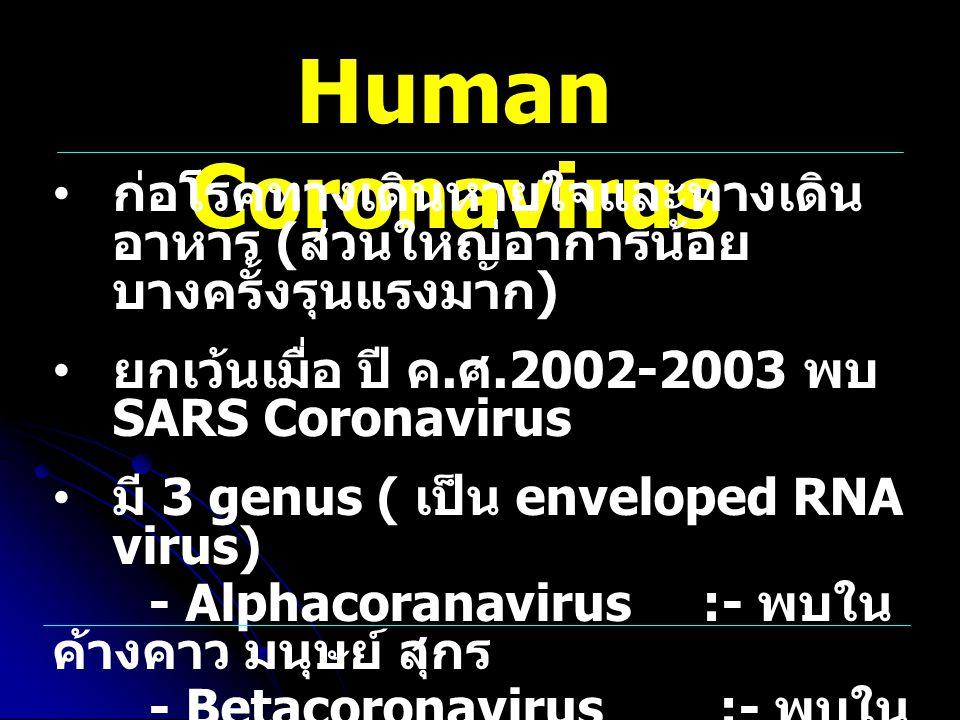 Human Coronavirus ก่อโรคทางเดินหายใจและทางเดิน อาหาร ( ส่วนใหญ่อาการน้อย บางครั้งรุนแรงมาก ) ยกเว้นเมื่อ ปี ค. ศ.2002-2003 พบ SARS Coronavirus มี 3 ge