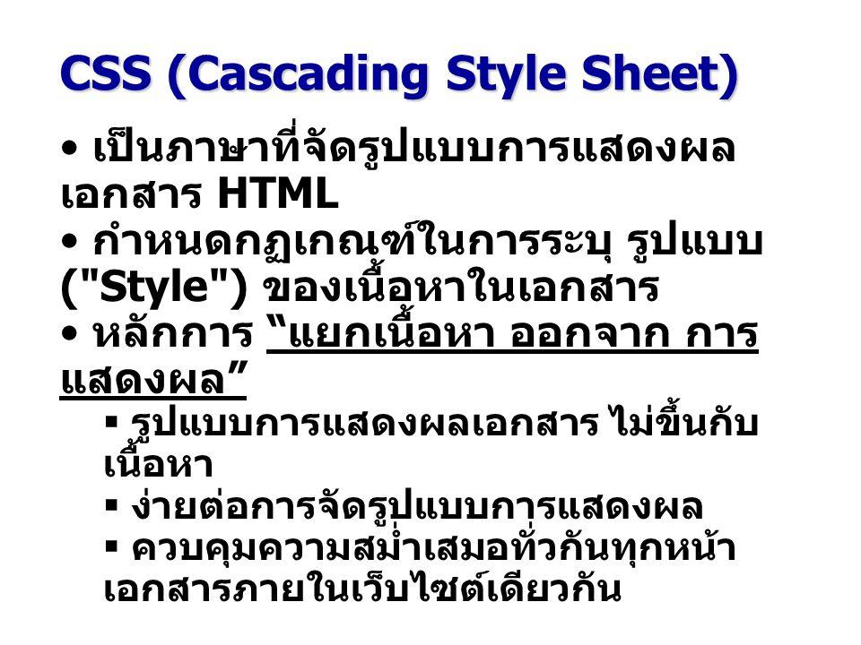CSS (Cascading Style Sheet) เป็นภาษาที่จัดรูปแบบการแสดงผล เอกสาร HTML กำหนดกฏเกณฑ์ในการระบุ รูปแบบ ( Style ) ของเนื้อหาในเอกสาร หลักการ แยกเนื้อหา ออกจาก การ แสดงผล  รูปแบบการแสดงผลเอกสาร ไม่ขึ้นกับ เนื้อหา  ง่ายต่อการจัดรูปแบบการแสดงผล  ควบคุมความสม่ำเสมอทั่วกันทุกหน้า เอกสารภายในเว็บไซต์เดียวกัน