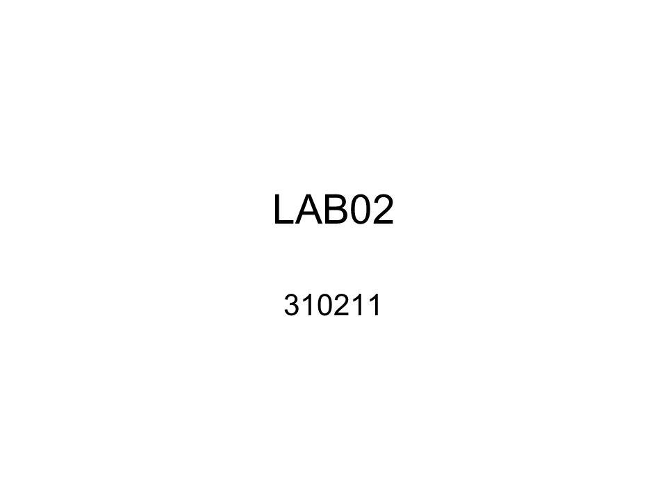 LAB02 310211