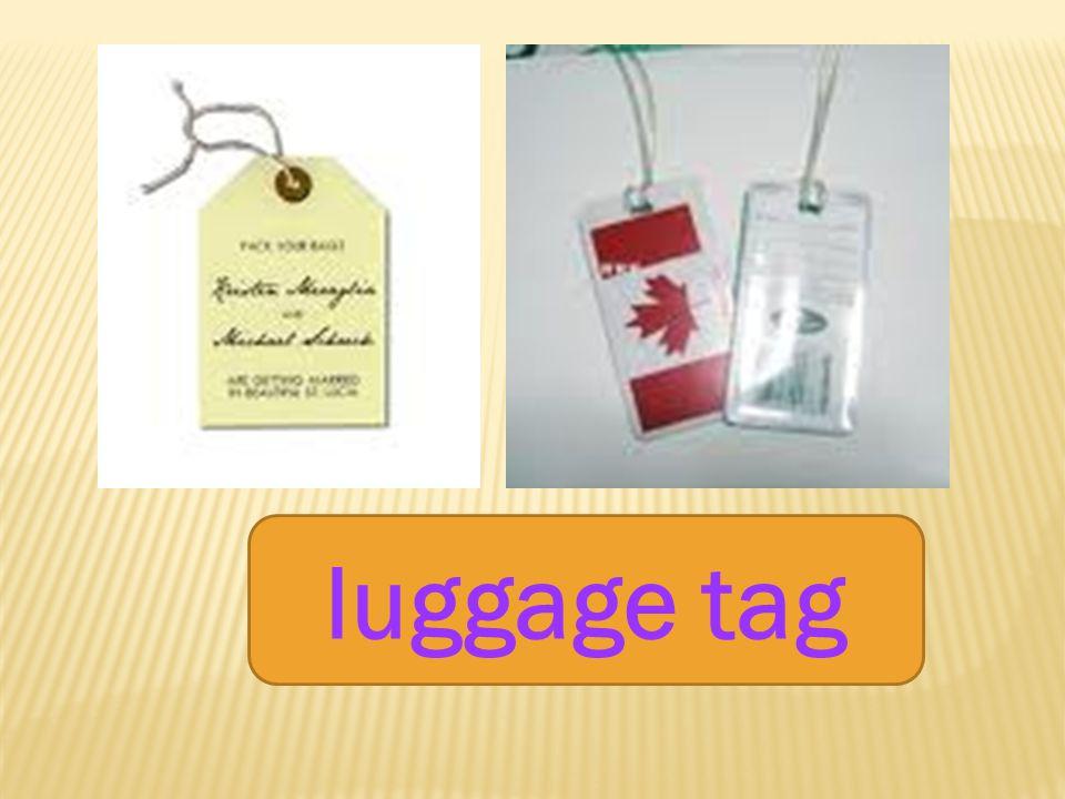 luggage baggage