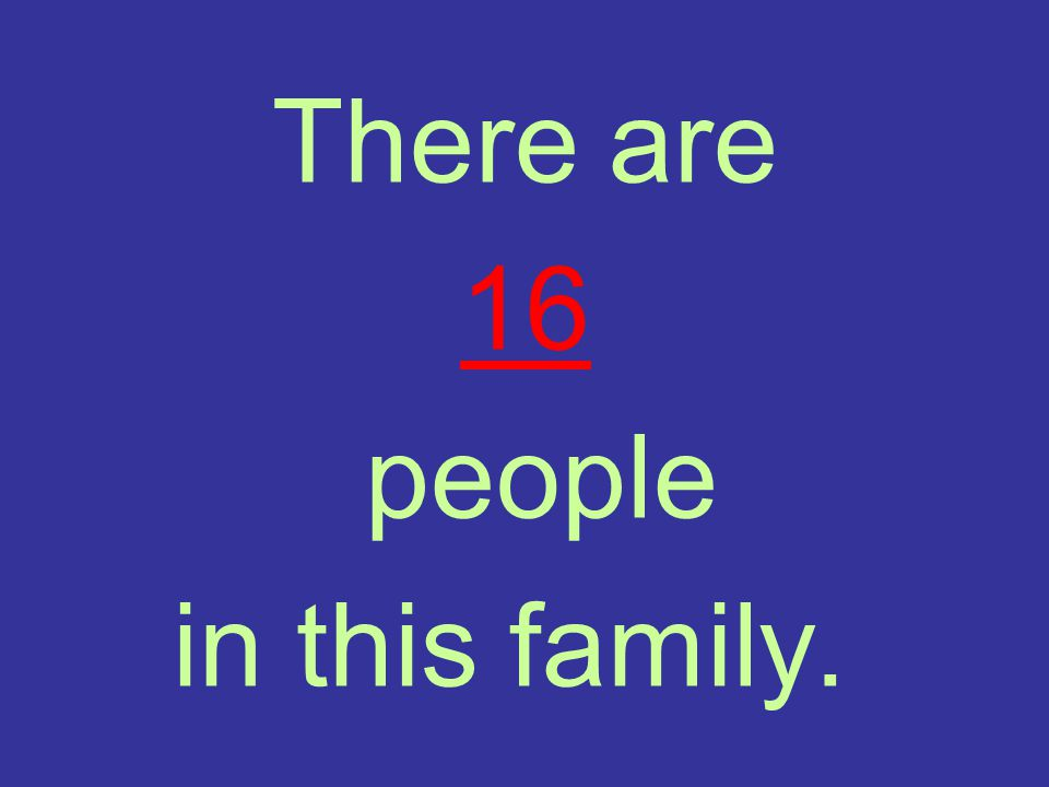 There are 16 people in this family.