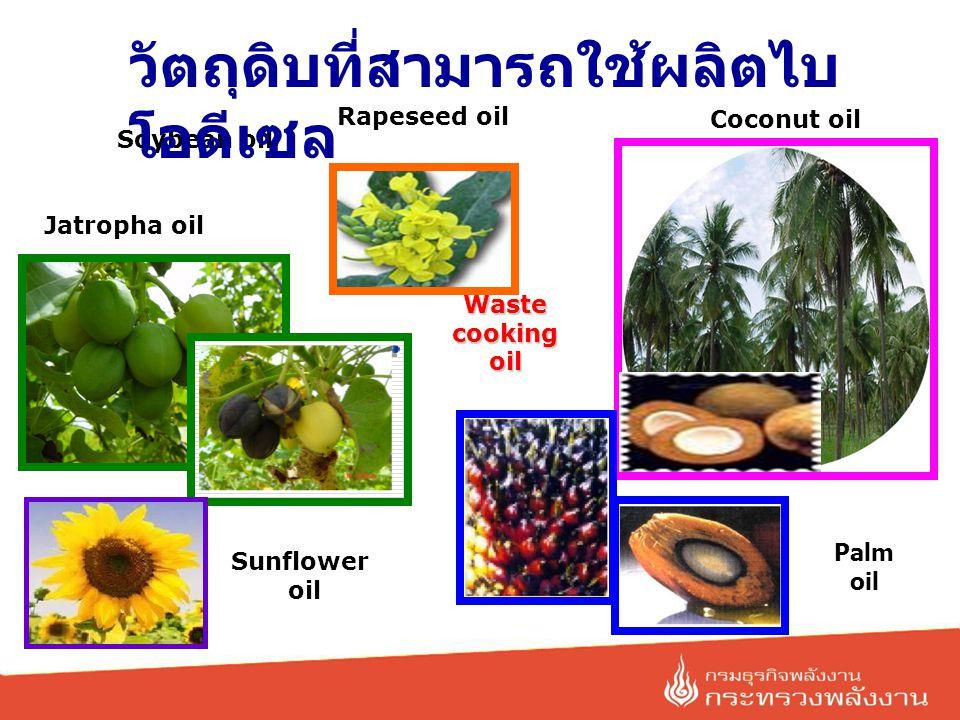Sunflower oil Coconut oil Palm oil Waste cooking oil Jatropha oil Rapeseed oil Soybean oil วัตถุดิบที่สามารถใช้ผลิตไบ โอดีเซล