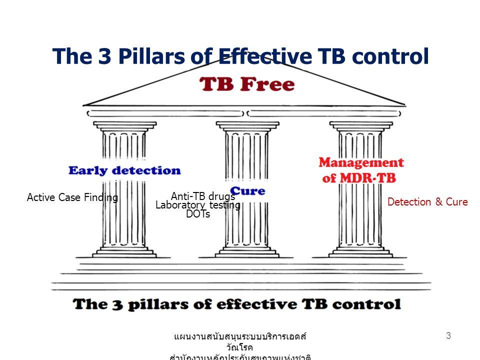 24 ปี 2557 ปี 2558 ตรวจติดตามการรักษาเชื้อ วัณโรคดื้อยา 4 ครั้ง / course การรักษา -เพิ่มการตรวจติดตามการรักษา วัณโรคดื้อยาสำหรับผู้ป่วย MDR TB 16 ครั้ง การพัฒนาระบบสารสนเทศ วัณโรค TB Data Set (13 แฟ้ม) แนวคิด : รับข้อมูล รพ จาก โปรแกรมสำเร็จรูปที่เข้าได้กับ data set เป็นหลัก (TBCM, SMART TB) ปรับ TB Data Set (ใหม่ 2 แฟ้ม) แนวคิด :ให้หน่วยบริการ สามารถ ใช้ข้อมูลที่มีอยู่ในระบบฐานข้อมูล รพ.