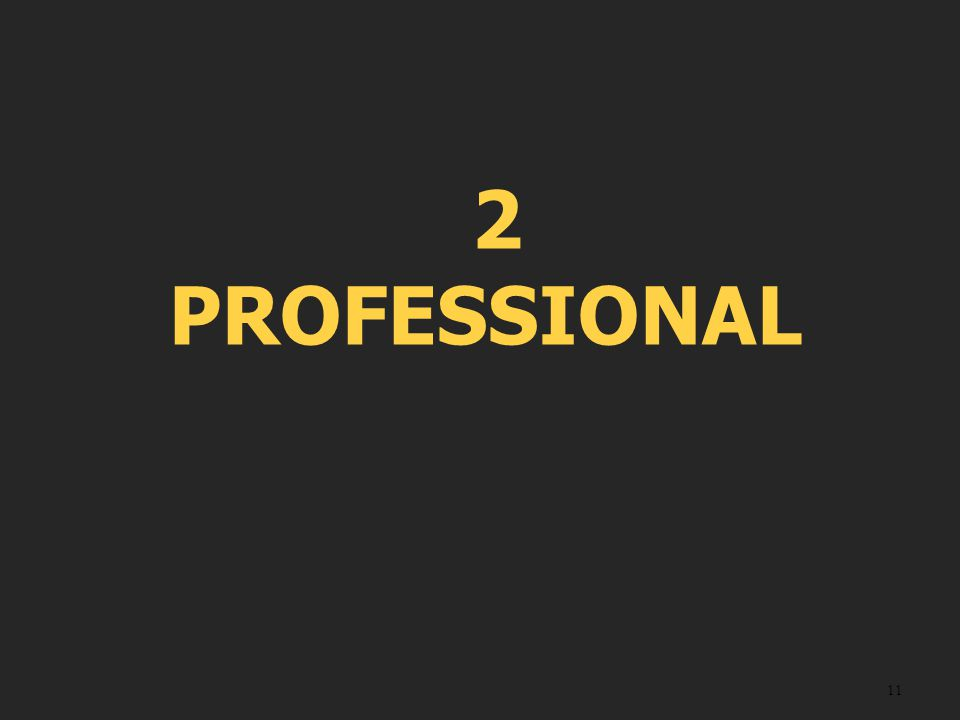 11 2 PROFESSIONAL