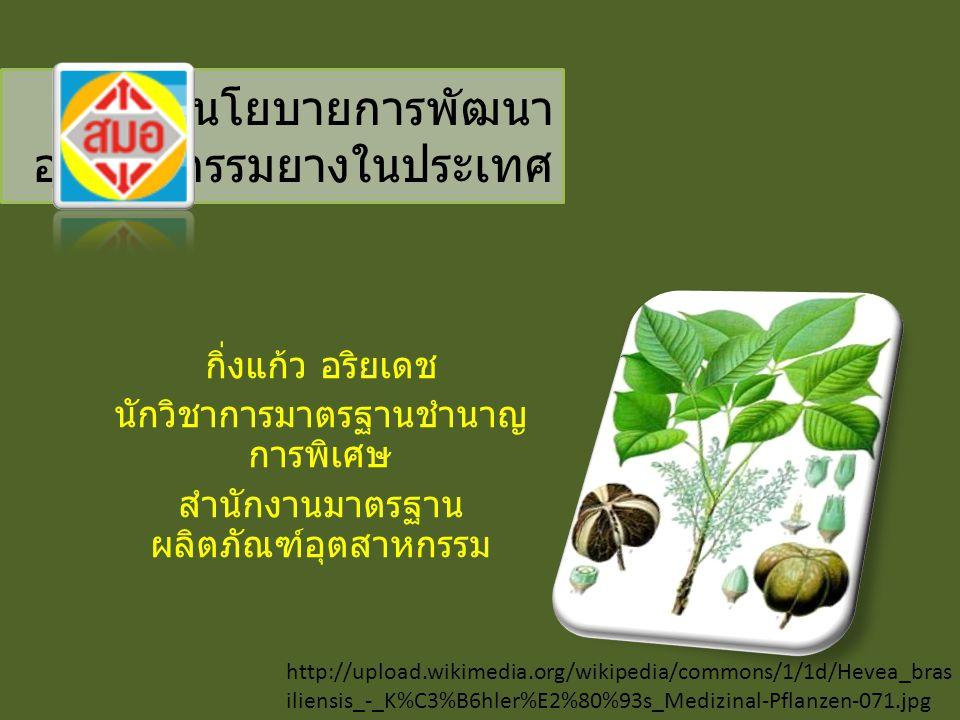 http://upload.wikimedia.org/wikipedia/commons/1/1d/Hevea_bras iliensis_-_K%C3%B6hler%E2%80%93s_Medizinal-Pflanzen-071.jpg นโยบายการพัฒนา อุตสาหกรรมยาง