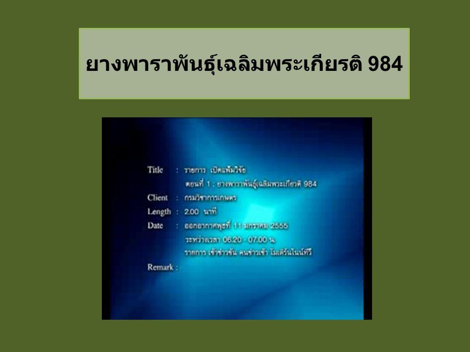 ยางพาราพันธุ์เฉลิมพระเกียรติ 984