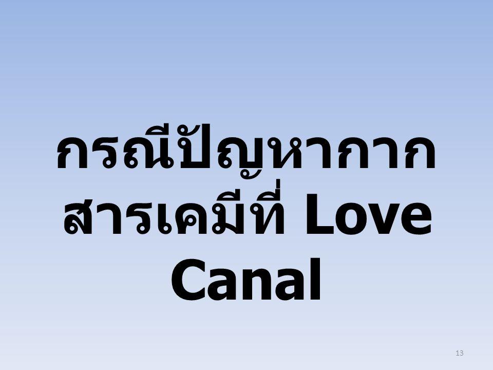 กรณีปัญหากาก สารเคมีที่ Love Canal 13