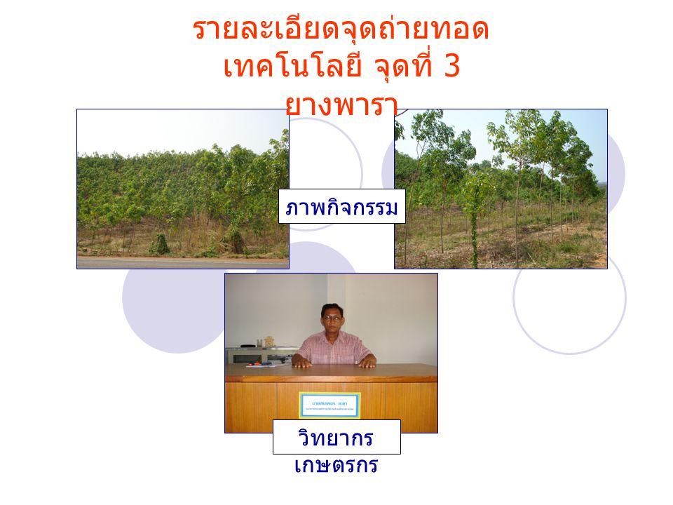 รายละเอียดจุดถ่ายทอด เทคโนโลยี จุดที่ 3 ยางพารา ภาพกิจกรรม วิทยากร เกษตรกร