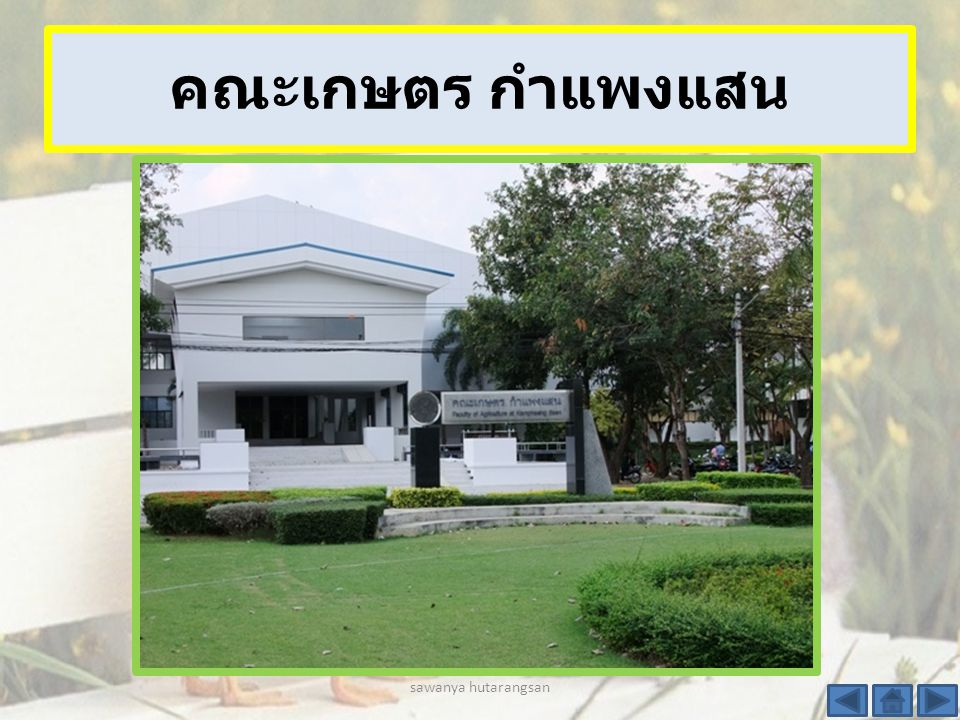 คณะศึกษาศาสตร์และพัฒน ศาสตร์ sawanya hutarangsan