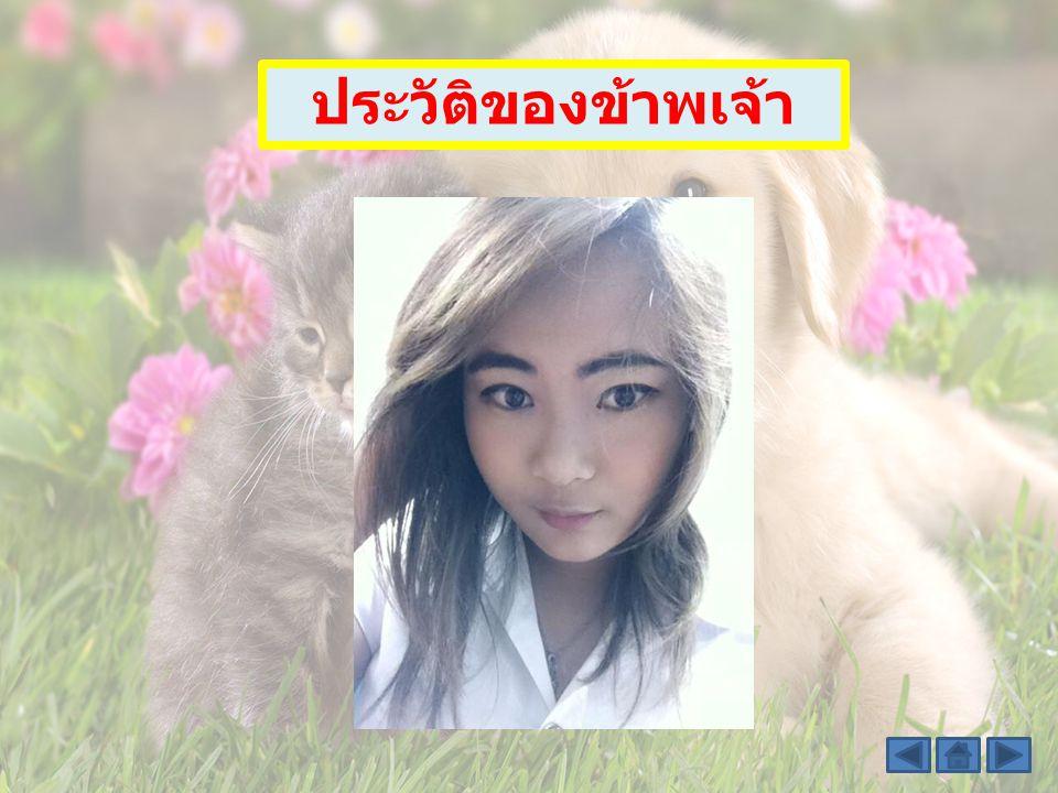 สารบัญ - ประวัติของ ข้าพเจ้า - แนะนำ มหาวิทยาลัย sawanya hutarangsan