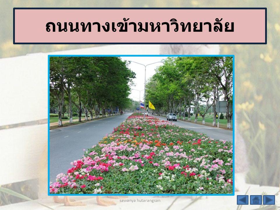 แนะนำสถานที่ มหาวิทยาลัยเกษตรศาส ตร์ sawanya hutarangsan