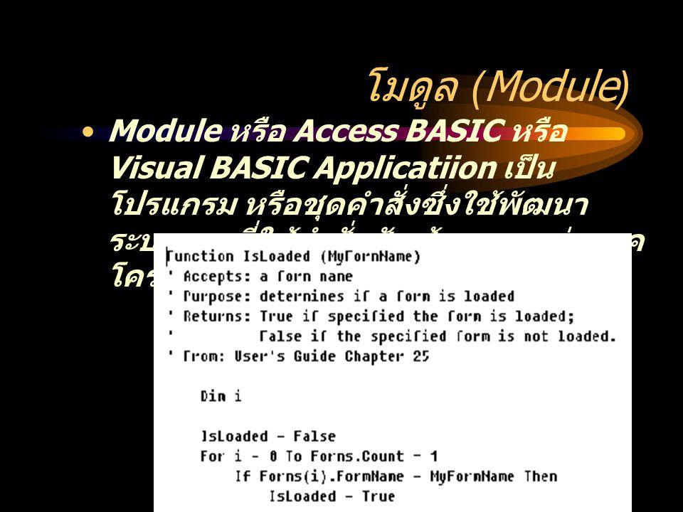 โมดูล (Module) Module หรือ Access BASIC หรือ Visual BASIC Applicatiion เป็น โปรแกรม หรือชุดคำสั่งซึ่งใช้พัฒนา ระบบงานที่ใช้คำสั่งซับซ้อนมากกว่าแมค โคร