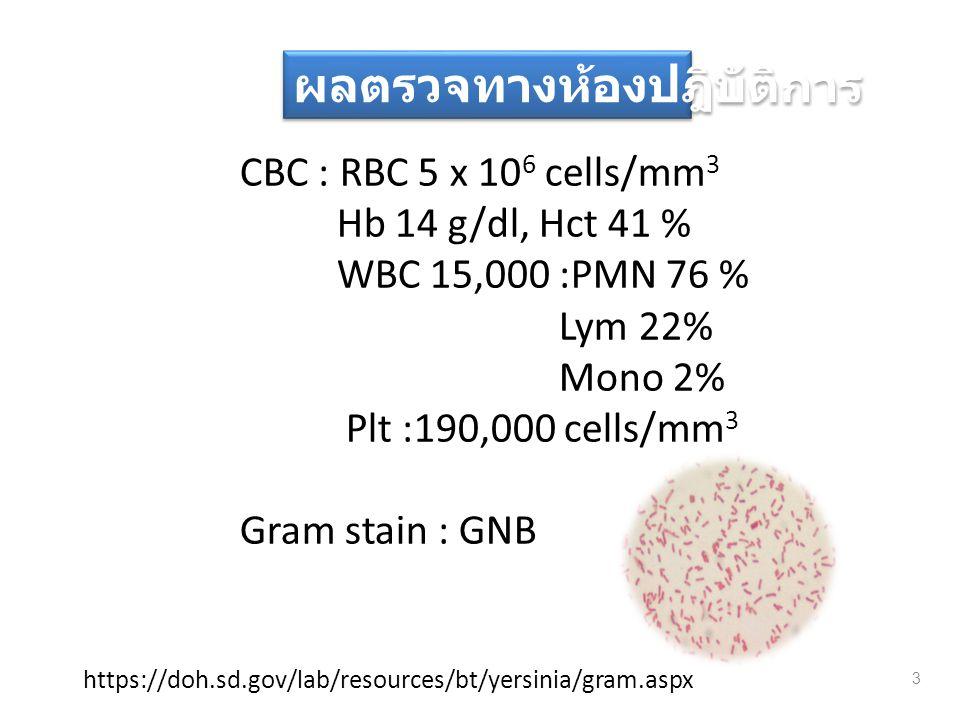CBC : RBC 5 x 10 6 cells/mm 3 Hb 14 g/dl, Hct 41 % WBC 15,000 :PMN 76 % Lym 22% Mono 2% Plt :190,000 cells/mm 3 Gram stain : GNB 3 ผลตรวจทางห้องปฎิบัต