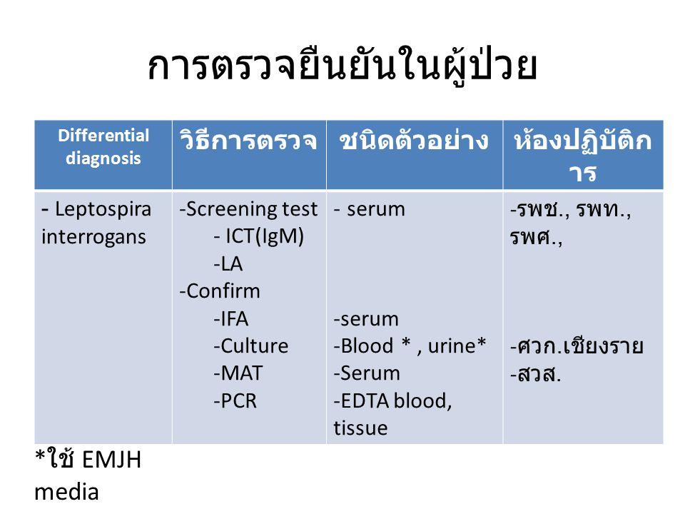 การตรวจยืนยันในผู้ป่วย Differential diagnosis วิธีการตรวจชนิดตัวอย่างห้องปฏิบัติก าร - Leptospira interrogans -Screening test - ICT(IgM) -LA -Confirm -IFA -Culture -MAT -PCR - serum -Blood *, urine* -Serum -EDTA blood, tissue - รพช., รพท., รพศ., - ศวก.