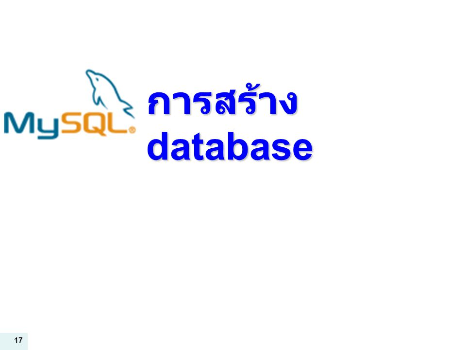 17 การสร้าง database