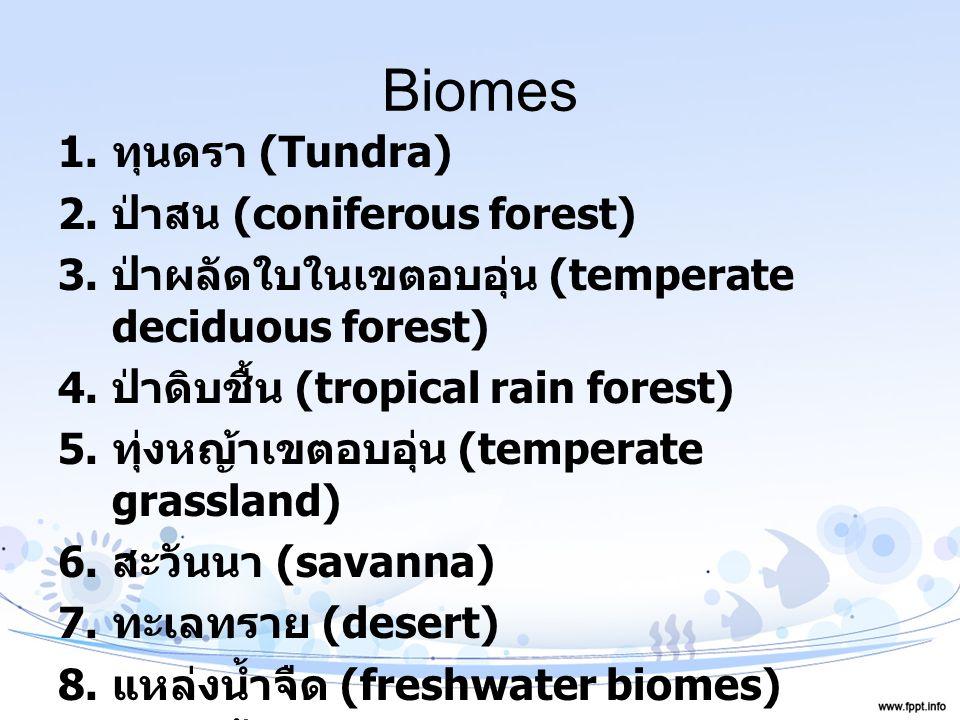 Biomes 1. ทุนดรา (Tundra) 2. ป่าสน (coniferous forest) 3. ป่าผลัดใบในเขตอบอุ่น (temperate deciduous forest) 4. ป่าดิบชื้น (tropical rain forest) 5. ทุ