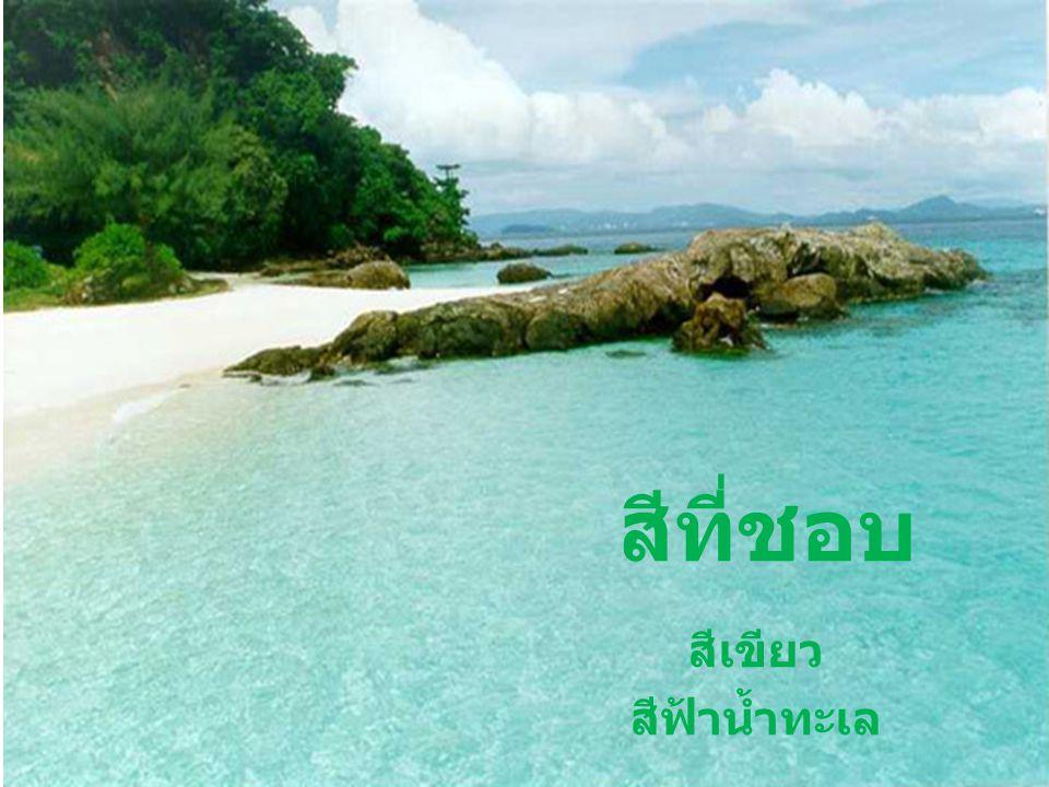 สีที่ชอบ สีเขียว สีฟ้าน้ำทะเล