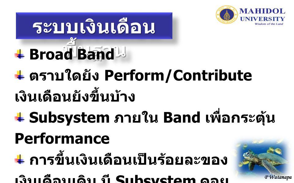 P Watanapa ระบบเงินเดือน พื้นฐาน Broad Band ตราบใดยัง Perform/Contribute เงินเดือนยังขึ้นบ้าง Subsystem ภายใน Band เพื่อกระตุ้น Performance การขึ้นเงินเดือนเป็นร้อยละของ เงินเดือนเดิม มี Subsystem คอย ผลักดัน โดยเชื่อมโยงกับ Performance Agreement และเกณฑ์ที่ทาง มหาวิทยาลัยจะกำหนด