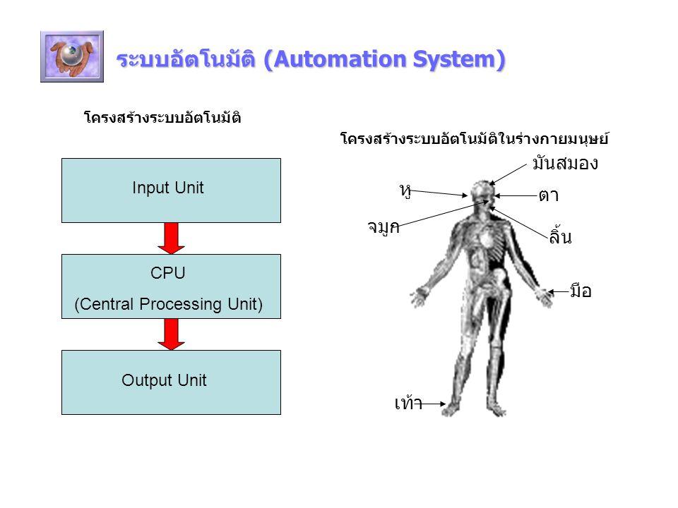 ระบบอัตโนมัติ (Automation System) โครงสร้างระบบอัตโนมัติ CPU (Central Processing Unit) Input Unit Output Unit มันสมอง ตา หู เท้า ลิ้น มือ จมูก โครงสร้างระบบอัตโนมัติในร่างกายมนุษย์