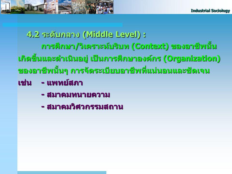 Industrial Sociology 4.2 ระดับกลาง (Middle Level) : การศึกษา/วิเคราะห์บริบท (Context) ของอาชีพนั้น เกิดขึ้นและดำเนินอยู่ เป็นการศึกษาองค์กร (Organizat